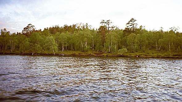 wpid390-ovre-pasvik-camping-12.jpg